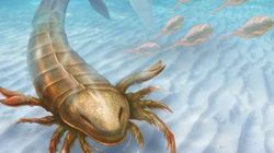 Θαλάσσιος σκορπιός ενάμισι μέτρου με αρχαιοελληνικό