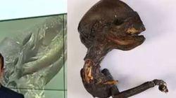 «Εξωγήινο» πτώμα βρέθηκε σε πόλη της