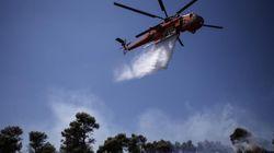 Υπό έλεγχο η Πυρκαγιά σε δασική έκταση στη