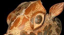 Μυκηναϊκό ανάκτορο ανακαλύφτηκε σε πεδιάδα της