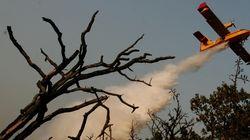 Μόλις το 10%-15% των πυρκαγιών από το 2000 και μετά οφείλονται σε φυσικά