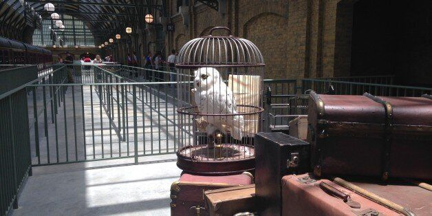 An owl sits amid baggage inside King's Cross Station, part of The Wizarding World of Harry Potter-Diagon...