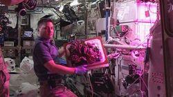 NASA: Αστροναύτες ετοιμάζονται να φάνε το πρώτο διαστημικό