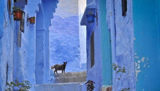 Γνωρίστε την μαγευτική μπλε πόλη του Μαρόκο μέσα από ονειρικές