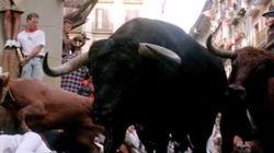 Ισπανία: Η selfie με τον μαινόμενο ταύρο αποδείχτηκε