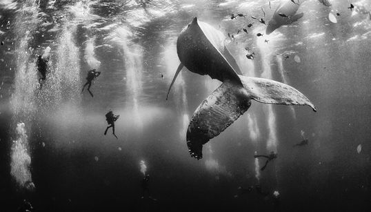 Αυτή είναι η συγκλονιστική φωτογραφία που κέρδισε στο διαγωνισμό National Geographic Traveler Photo