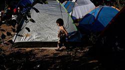 Σε εξέλιξη οι εργασίες στον Ελαιώνα για την μετεγκατάσταση των μεταναστών από το Πεδίον του