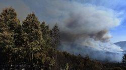 Στο έλεος των πυρκαγιών η Σιβηρία: Στάχτη εκατομμύρια