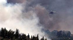 Μισό δασικό στρέμμα καίγεται κάθε λεπτό στην Ελλάδα (data