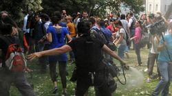 600 δέντρα θα πρέπει να φυτέψει ο αστυνομικός που «ψέκασε» τη «γυναίκα με το κόκκινο φόρεμα» στο πάρκο