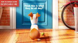 The Secret Life of Pets: Τι κάνουν τα κατοικίδιά μας όταν μένουν μόνα στο