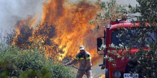 Στο έλεος των πυρκαγιών η χώρα το φετινό