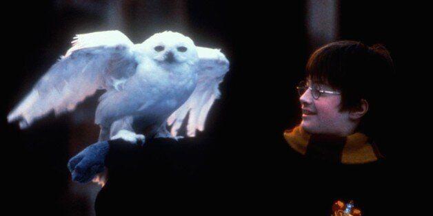 (GERMANY OUT) Harry Potter Und Der Stein Der Weisen Daniel Radcliffe Harry Potter (Daniel Radcliffe)...