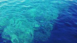 Θάλασσα: το νέο ένθετο της HuffPost