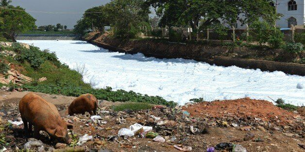 A canal which once carried water from Bellandur Lake to Varthur Lake is filled with froth emanating from...