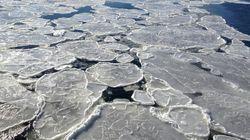 NASA: Μεγάλη μάζα πάγου στην Ανταρκτική θα έχει εξαφανιστεί ως το τέλος του