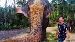 Αφήστε τις «σέλφι»: Αυτός ο ελέφαντας στην Ταϋλάνδη έβγαλε την καλύτερη