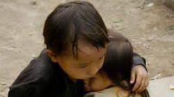 Τραβηγμένη στο Βιετνάμ το 2007 η «πιο διαδεδομένη φωτογραφία του σεισμού του