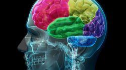 Σουηδοί επιστήμονες ξεγέλασαν το GPS του εγκεφάλου δημιουργώντας την αίσθηση της