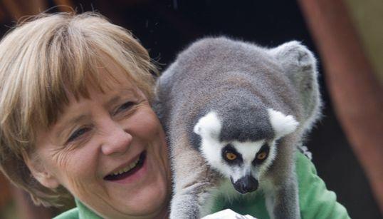 H Άνγκελα Μέρκελ με ένα λεμούριο