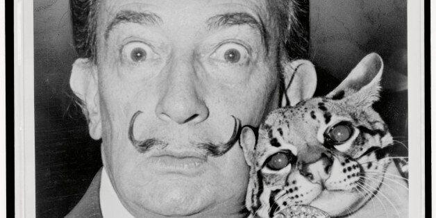 Mιάου!Πορτρέτα διάσημων καλλιτεχνών με τις γάτες που τους βοήθησαν να μη χάσουν τα λογικά