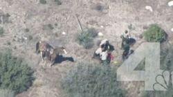 Δέκα αστυνομικοί στις ΗΠΑ χτυπούν βάναυσα ύποπτο που έχει
