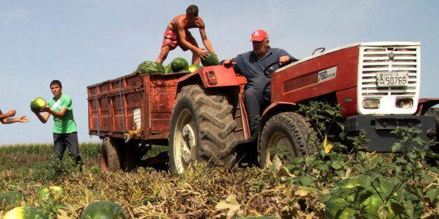 Αποζημιώσεις ύψους 30 εκατ. ευρώ σε αγρότες από τον