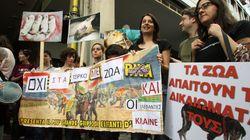 Δεύτερη πανελλαδική διαμαρτυρία κατά της κακοποίησης των ζώων και υπέρ των δικαιωμάτων