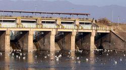 Σέρρες: Σε οριακό σημείο η στάθμη του νερού στη λίμνη Κερκίνη- Ανοίγουν τα