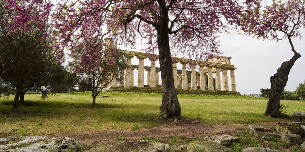 A Temple in Paestum (Italy) during spring season.