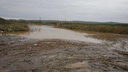 Σε κατάσταση εκτάκτου ανάγκης ο νομός Σερρών. Τουλάχιστον 50.000 καλλιεργήσιμα στρέμματα έχουν