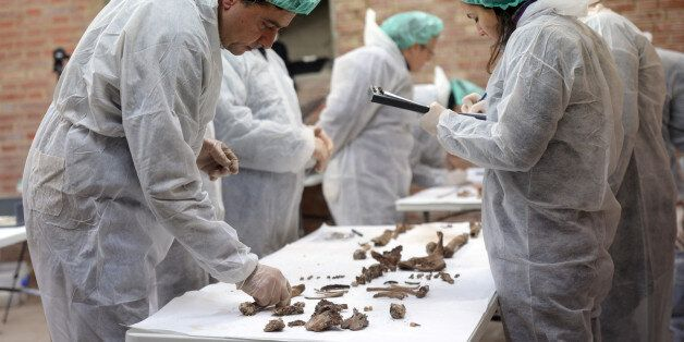 MADRID, SPAIN - JANUARY 24: Experts analyse bones to find the remains of the 17th Century author Miguel...