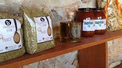 Wise Greece: Η «σοφή» κίνηση που στηρίζει τους έλληνες παραγωγούς και βοηθάει όσους έχουν
