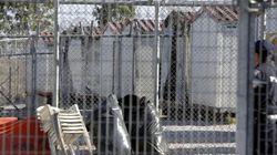 Αυτοκτονία μετανάστη στο κέντρο κράτησης στην Αμυγδαλέζα. Ξεσηκώθηκαν οι αλλοδαποί