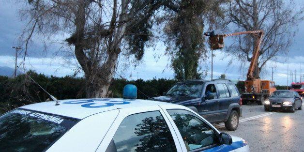 Στο Άργος ισχυροί άνεμοι έσπασαν δένδρα στην εθνική Άργους