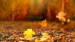 Φθινοπωρινή ισημερία, μια γιορτή