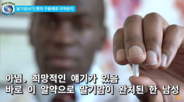'강아지 구충제 먹고 말기암 완치' 유튜브 영상