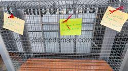 Γαλλία: Παγκάκια μπήκαν σε κλουβιά για να μην πλησιάζουν άστεγοι και