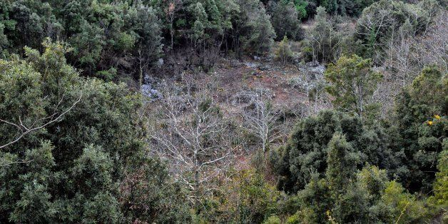 TO GO WITH AFP STORY 'GREECE-DEBT-FINANCE-ENERGY-ENVIRONMENTA view of the damaged forest due to the illigal...