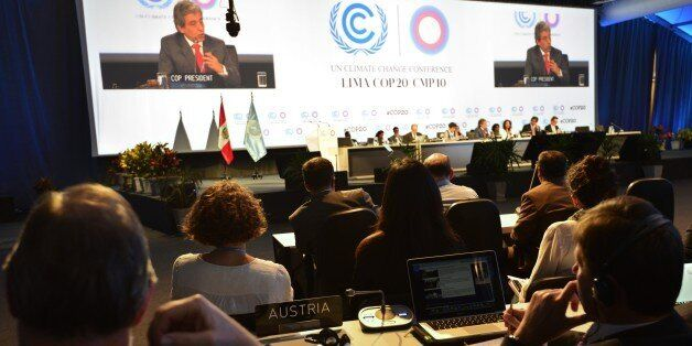 COP20 President and Peruvian Minister of Environment Manuel Pulgar (on screen) addresses representatives...