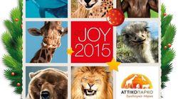 Χριστούγεννα με τα ζώα του Αττικού Ζωολογικού