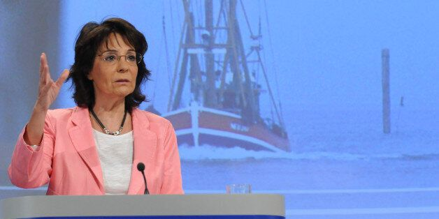 European Commissioner for Maritime Affairs and Fisheries Maria Damanaki speaks during a media conference...