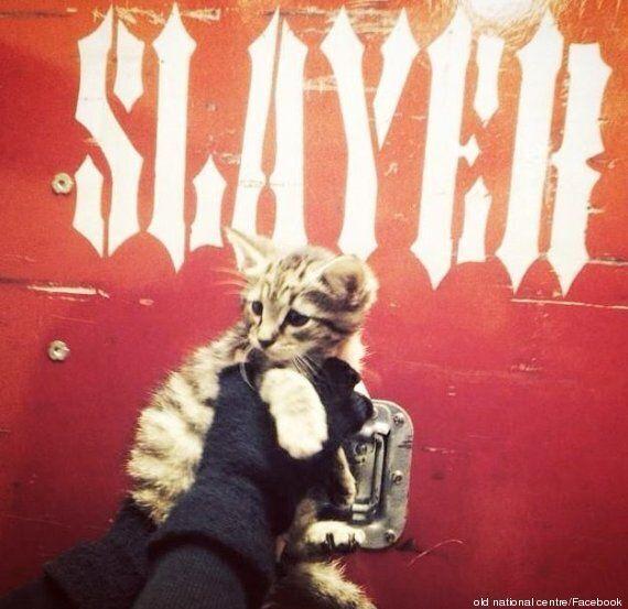 Ο κιθαρίστας των Slayer έσωσε ένα