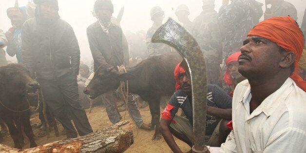 Hindu devotees gather before the start of sacrificial offerings to the Hindu goddess Gadhimai in Bariyapur...