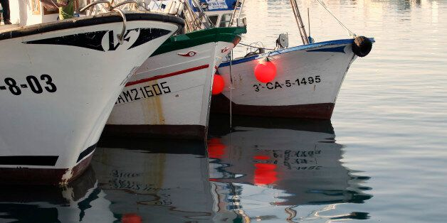 Fishing boats are anchored at the Barbate port in Barbate, southern coast of Spain January 9, 2012.Hundreds...