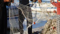 Pour survivre, des pêcheurs de Kerkennah