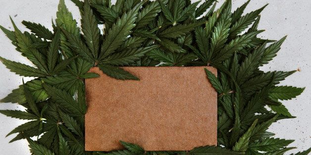 Green cannabis leafs frame with usable copy space in the middle. Top view, copy