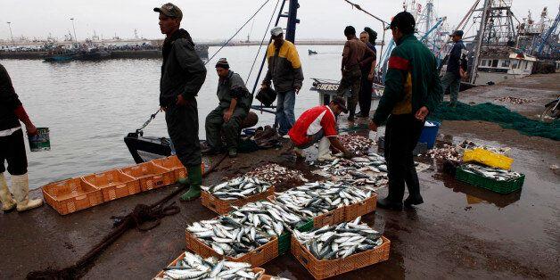 Des pêcheurs dans le port