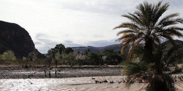 Les oasis marocaines face aux enjeux de la gestion