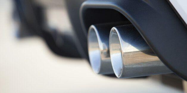 Volkswagen s'excuse d'avoir forcé des singes à respirer des gaz